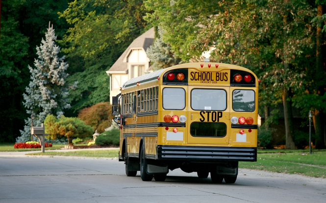 School Bus seen from back Driving Down Road in lovely suburban Neighborhood